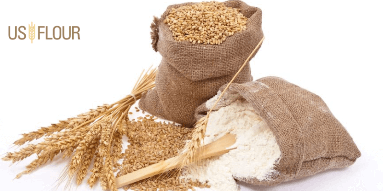 What Do You Mean By Whole-Wheat Flour