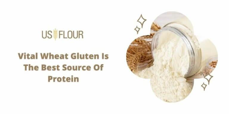 vital wheat gluten wholesaler